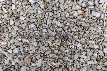 çakıl küçük soyut kaya zemin model Stok fotoğraf © grafvision