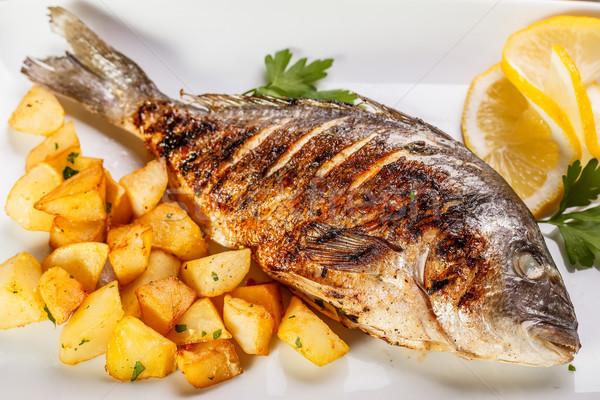 Stock photo: Sea bream fish