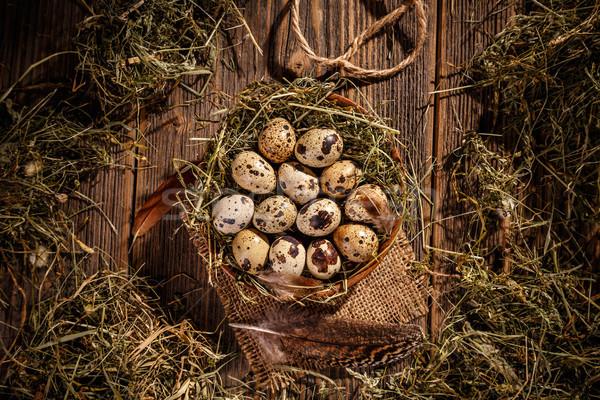 Top view of quail eggs Stock photo © grafvision