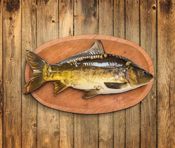 Common carp fish Stock photo © grafvision