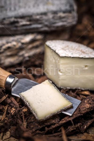 Brie cream cheese Stock photo © grafvision