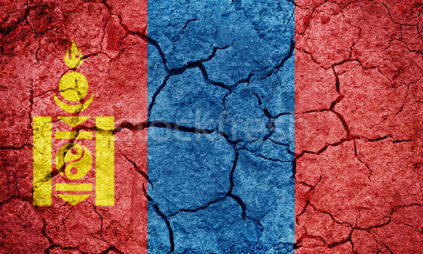 Mongólia zászló száraz Föld föld textúra Stock fotó © grafvision