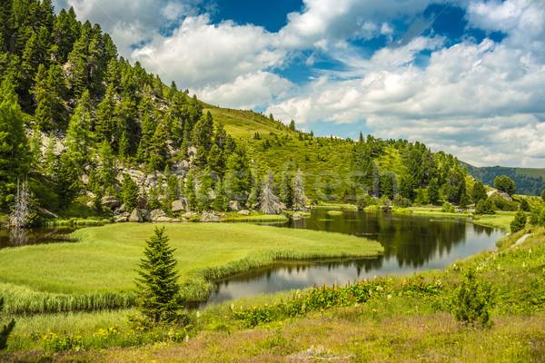 Alpine göl manzara gökyüzü orman doğa Stok fotoğraf © grafvision