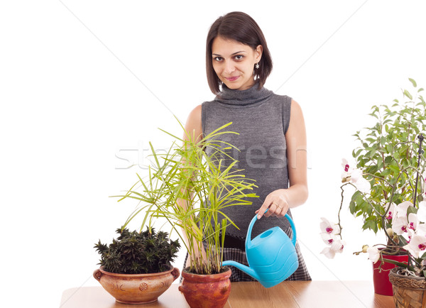 Stock photo: Woman watering a plant
