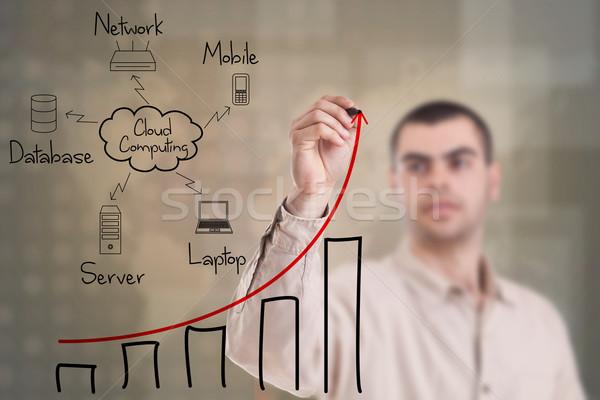 Cloud computing diagram Stock photo © grafvision