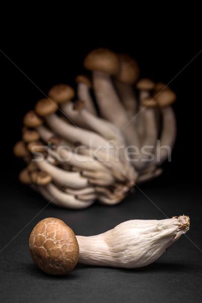 Champignons voedsel gezondheid champignon cap Stockfoto © grafvision