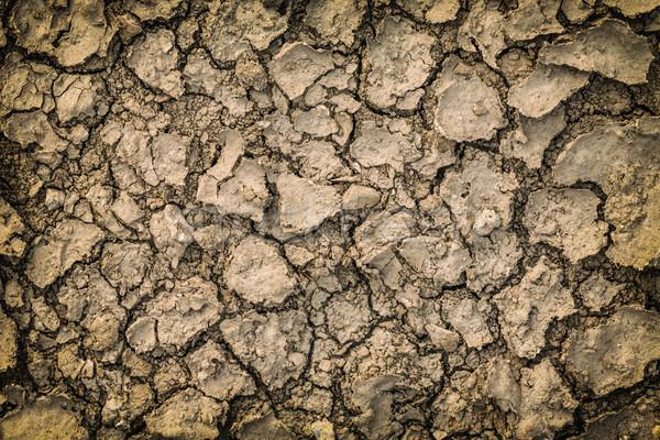 Cracked dry ground Stock photo © grafvision