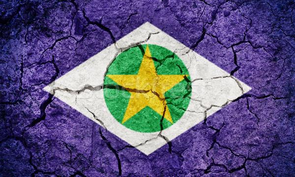 State of Mato Grosso, state of Brazil, flag Stock photo © grafvision
