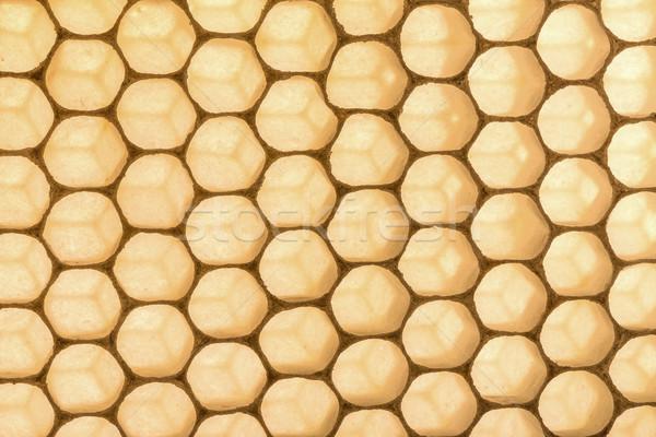 Petek doku çerçeve altın sarı Stok fotoğraf © grafvision
