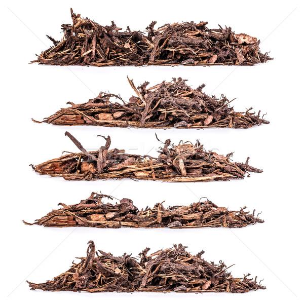 Bark mulch Stock photo © grafvision