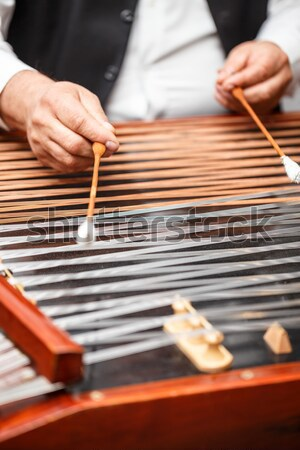 Traditional musical instrument  Stock photo © grafvision
