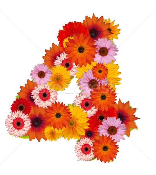花 番号 孤立した 白 学校 庭園 ストックフォト © grafvision