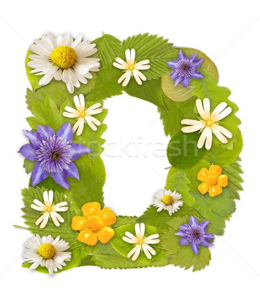 緑色の葉 花 フォント 白 文字d ツリー ストックフォト © grafvision