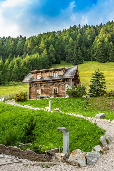 Alpesi ház út vezető erdő zöld Stock fotó © grafvision