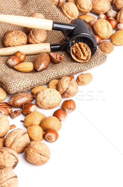 Varieties of nuts Stock photo © grafvision
