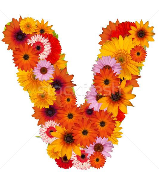 Flower letter Stock photo © grafvision