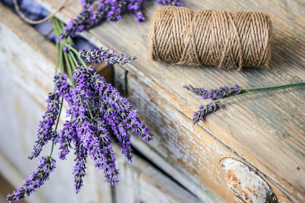 Stock photo: Lavender flowers