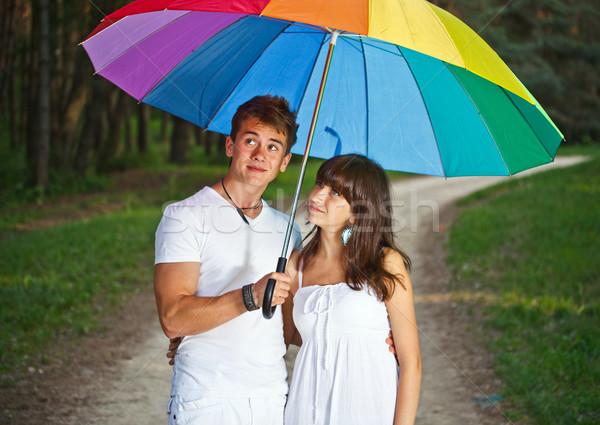 çift şemsiye dışında orman yağmur Stok fotoğraf © grafvision