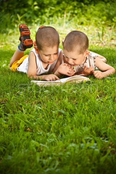 男の子 図書 緑の草 男 太陽 ストックフォト © grafvision