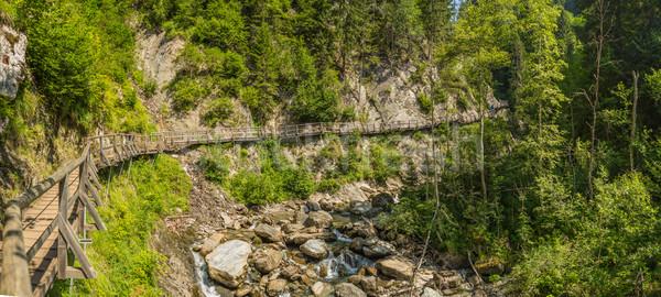 Wooden path Stock photo © grafvision