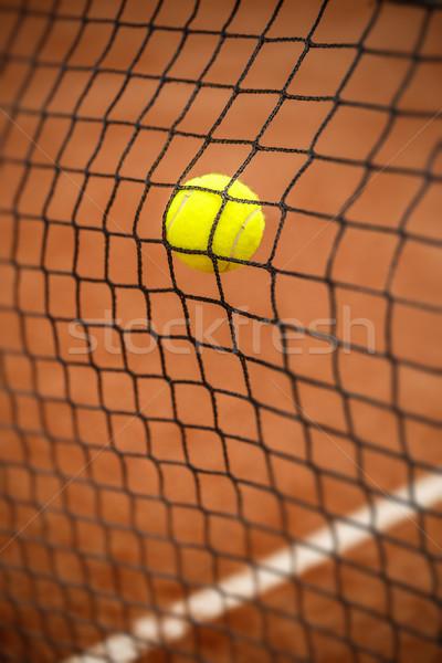 Tennisbal tennis net tennisbaan achtergrond bal Stockfoto © grafvision