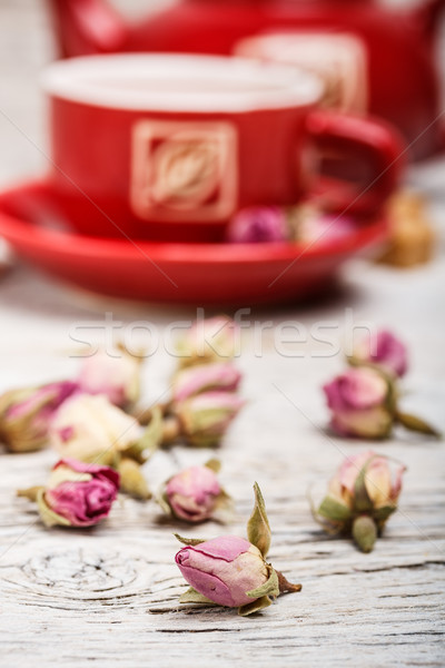 Captivating rose bud vector photographs