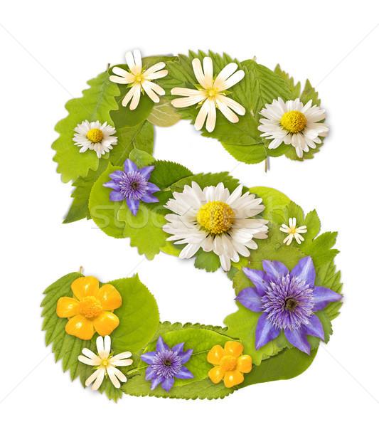 緑色の葉 花 フォント 白 手紙 ツリー ストックフォト © grafvision