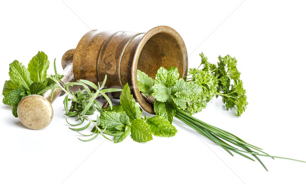 Mortar with fresh herbs Stock photo © grafvision