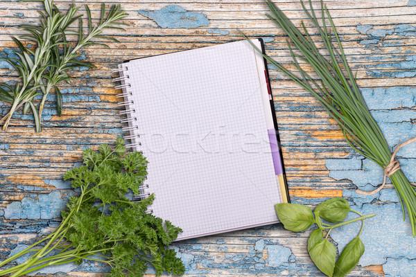 Abierto receta libro frescos hierbas Foto stock © grafvision