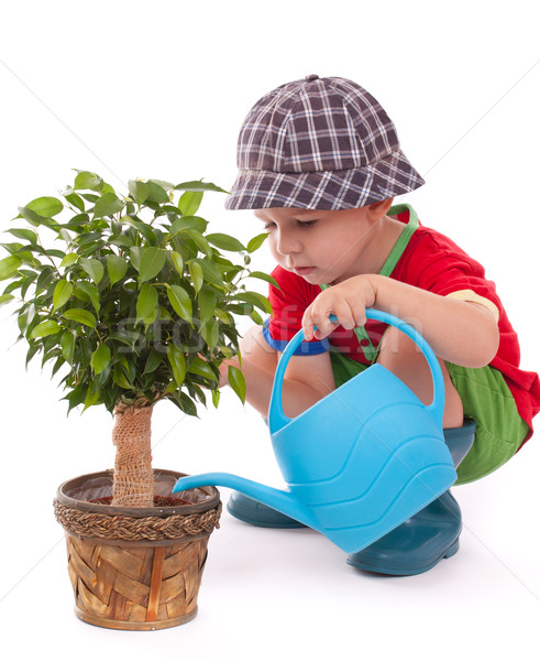a boy with a watering-can Stock photo © grafvision