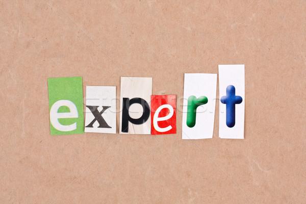 Expert Stock photo © grafvision