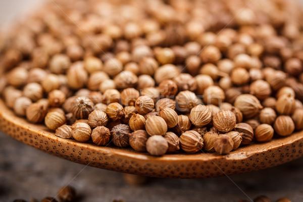 Coentro sementes secas colher erva Foto stock © grafvision
