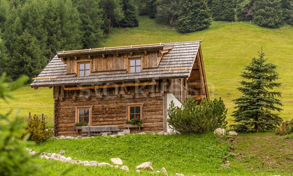 Alpine chalet  Stock photo © grafvision