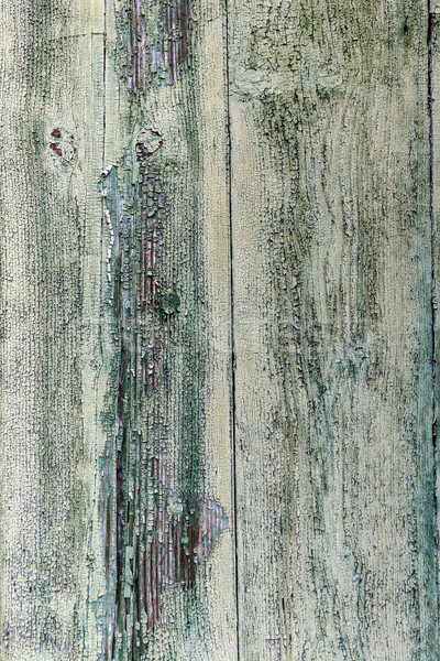 Painted cracky green wooden texture Stock photo © grafvision