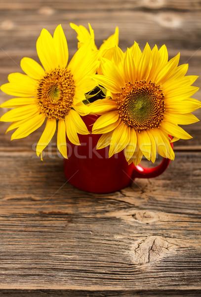 Yellow sunflowers  Stock photo © grafvision