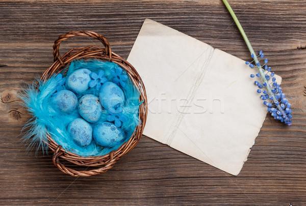 Stock foto: Blau · Eier · legen · voll · Bekanntmachung · Papier