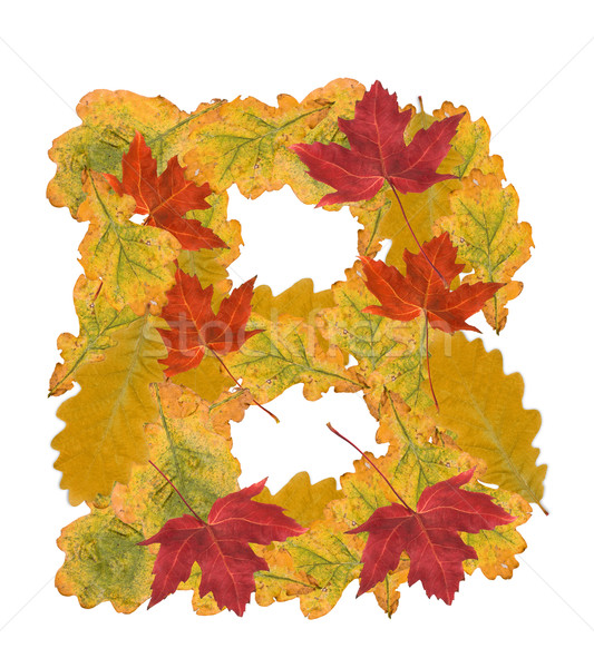 autumn leaves letter Stock photo © grafvision