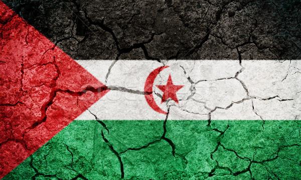 アラブ 民主的な 共和国 フラグ 地球 ストックフォト © grafvision