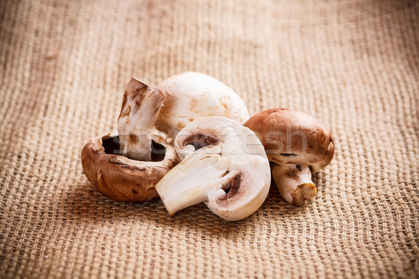Fresh champignons Stock photo © grafvision