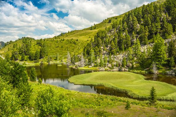 Alpino paisagem lago céu natureza árvores Foto stock © grafvision