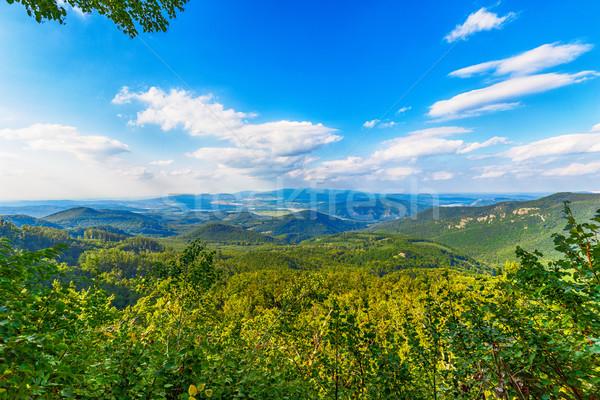 Montagna valle danubio naturale estate panorama Foto d'archivio © grafvision