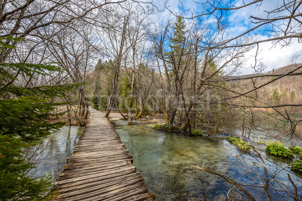 River stream and wooden path Stock photo © grafvision