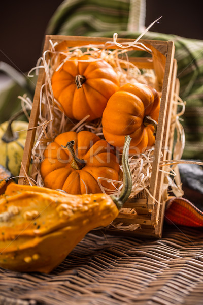 Ornamental pumpkins Stock photo © grafvision