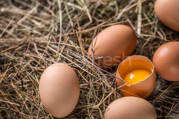 Fresh brown eggs Stock photo © grafvision
