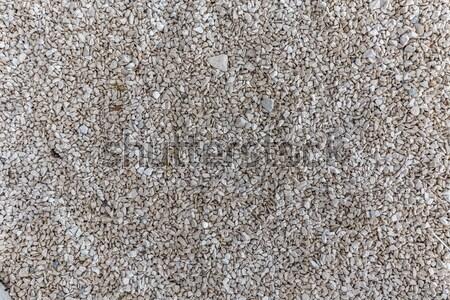 Szürke sóder kavics padló textúra felső Stock fotó © grafvision