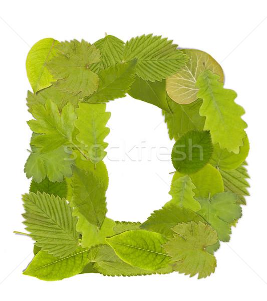 緑色の葉 手紙 フォント 白 文字d ツリー ストックフォト © grafvision
