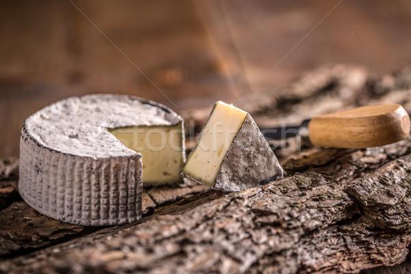 Camembert queso rebanada corteza blanco Foto stock © grafvision
