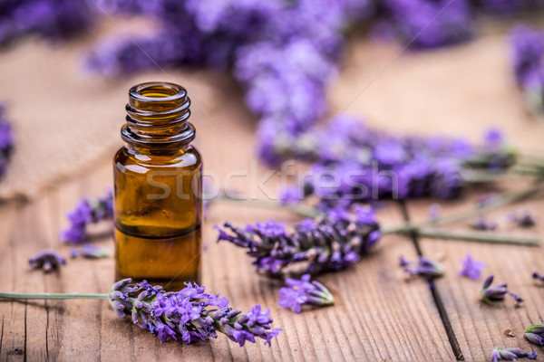Herbal oil and lavender flowers  Stock photo © grafvision