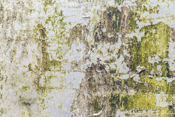 Corroded white metal background Stock photo © grafvision