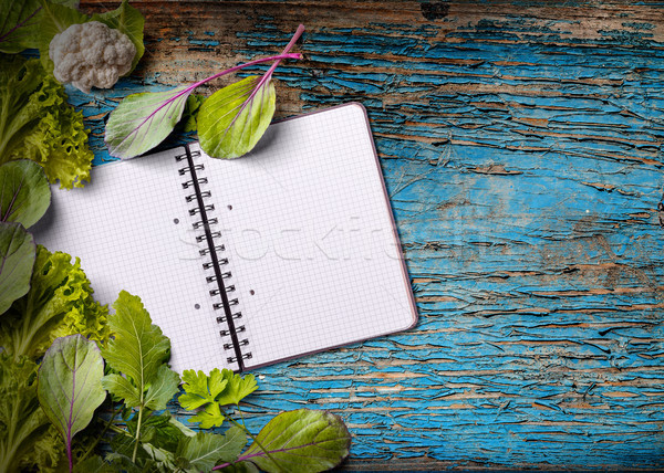 Książka kucharska kopia przestrzeń zielenina niebieski żywności Zdjęcia stock © grafvision